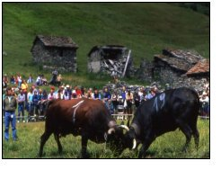 cultura in valle d'aosta